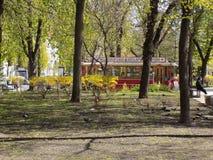 Ressort en parc Shevchenko Photographie stock libre de droits