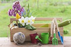 Ressort et concept de jardinage Images stock