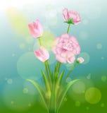 Ressort et fleurs Images libres de droits