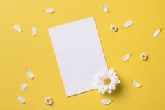 Ressort ou fond d'été avec l'espace de copie pour le texte Photographie stock
