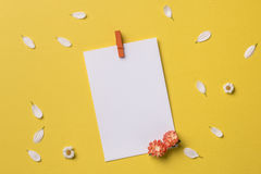 Ressort ou fond d'été avec l'espace de copie pour le texte Photo stock