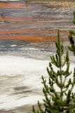 Ressort prismatique grand en parc national de Yellowstone images libres de droits