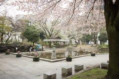 Ressort Sakura Park de Nagoya photos libres de droits