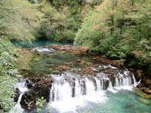 Ressort unique de rivière Una Image libre de droits