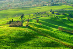 Ressort vert de l'atmosphère dans un paysage de la Toscane, Italie Images libres de droits