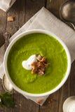 Ressort vert fait maison Pea Soup Photographie stock libre de droits