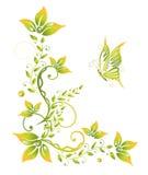 Ressort, vert, fleurs Photo libre de droits