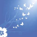 Ressort, voler blanc de papillons Images stock