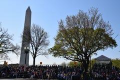 2016 ressortissant Cherry Blossom Parade dans le Washington DC Images stock