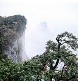Ressortissant Forest Park de Zhangjiajie photo libre de droits