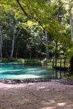 Ressorts d'eau douce la Floride Etats-Unis avec de l'eau beau clair bleu image libre de droits