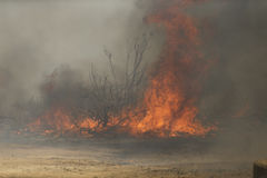 Ressorts de Forrest Fire - de Camarillo 5-2-2013 Photo stock
