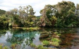 Ressorts du Nouvelle-Zélande Images libres de droits