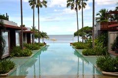 Ressource de palmier de mer de piscine Images stock