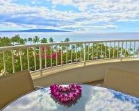 Ressource hawaïenne photographie stock