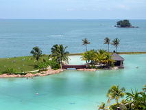 Ressource tropicale photos stock