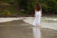 Ressource tropicale Images libres de droits