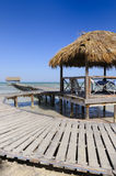 Ressource tropicale images stock