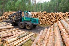 Ressources de bois de construction Photographie stock libre de droits