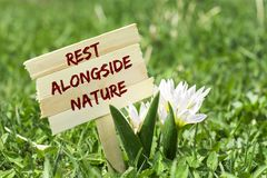 Rest alongside nature. On wooden sign in garden with white spring flower royalty free stock photos