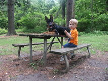 Rest Area. Five years old boy and his dog Royalty Free Stock Photos
