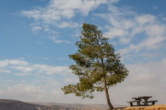 Rest area in Ein Avdat nature park Royalty Free Stock Photo