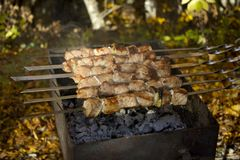 Rest in the autumn forest. Picnic with meat, hot tea on the fire. stock image