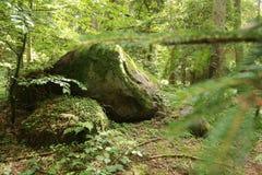 Rest av den megalitiska gravvalvet Forst Poggendorf 1 i Mecklenburg-Vorpommern, Tyskland arkivbilder