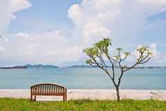 Rest bench and the tree at shore. In wide angel view Stock Photography