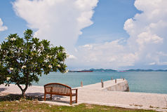 Rest Bench Under The Tree At Shore Royalty Free Stock Photo