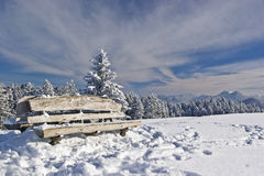 Rest bench in winter Royalty Free Stock Image