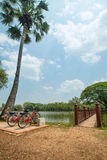 Rest Bicycle near the river in tropic nice park Royalty Free Stock Photos