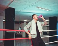 Rest boxer in the ring stock image
