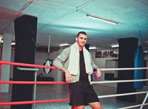 Rest boxer in the ring. stock images