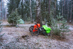 The rest of the Cycling in the woods in snowy weather. Royalty Free Stock Images