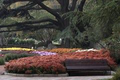 Rest in einem botanischen Garten stockfoto