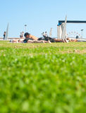 Rest on a grass Royalty Free Stock Image