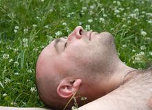 Rest on green grass Royalty Free Stock Photography