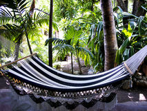 Rest in a hammock in Costa Ricas tropical jungles Royalty Free Stock Images