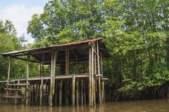Rest-house in the mangrove forest. Thailand Stock Images