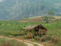 Rest hut in thailand farm Royalty Free Stock Photos