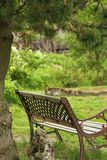 Rest in peace. Garden bench beneath a pinetree in a green garden, very peaceful and inviting Stock Photo