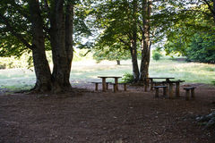 Rest place  in forest in Krushevo. Makedonia Stock Photo