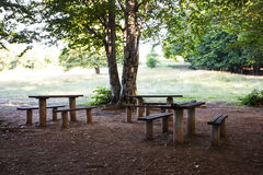 Rest place  in forest in Krushevo. Makedonia Royalty Free Stock Image