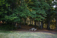 Rest place  in forest in Krushevo. Makedonia Royalty Free Stock Photography