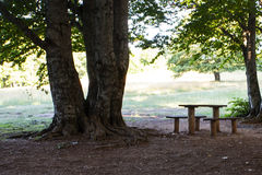 Rest place  in forest in Krushevo. Makedonia Royalty Free Stock Photo