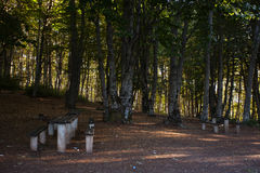 Rest place  in forest in Krushevo. Makedonia Stock Image
