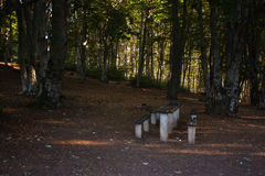 Rest place  in forest in Krushevo Royalty Free Stock Images