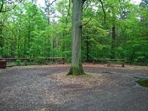 Rest place in the woods with parking.  stock photography