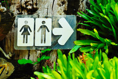 Rest room signage on the tree Royalty Free Stock Photo